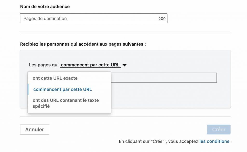 capture-ecran-linkedin-ads-ciblage-url